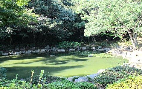 上山公園-1