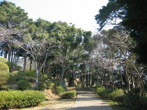 亀岡公園-1