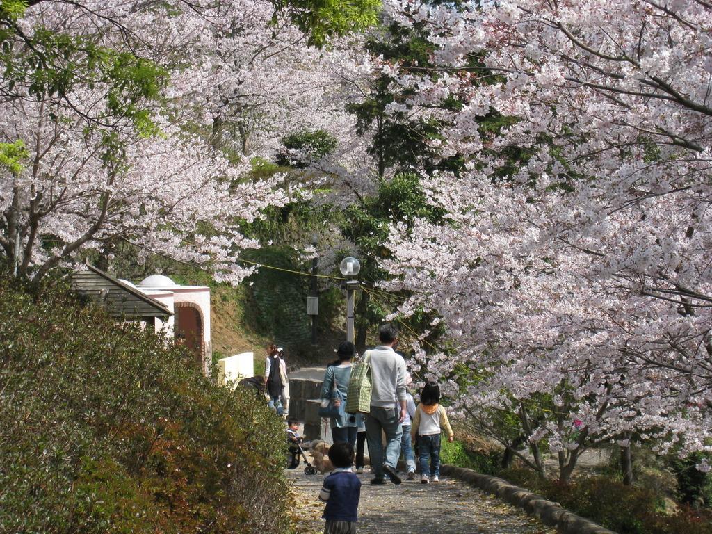 나카오 성 공원 (中尾城公園)-2