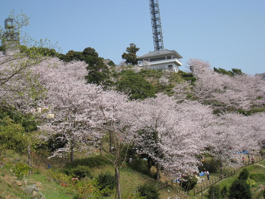 나카오 성 공원 (中尾城公園)-1