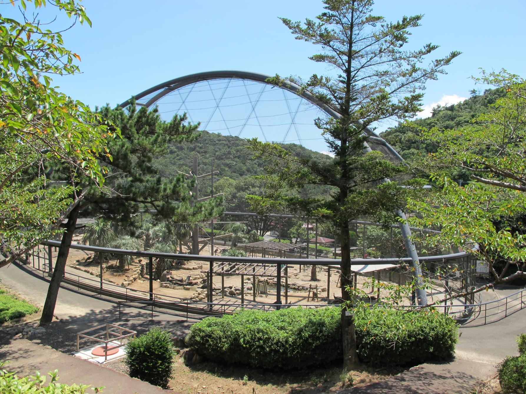 Osaki Peacock Park-2