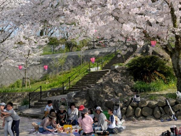【2021年中止】風頭公園桜まつり-2