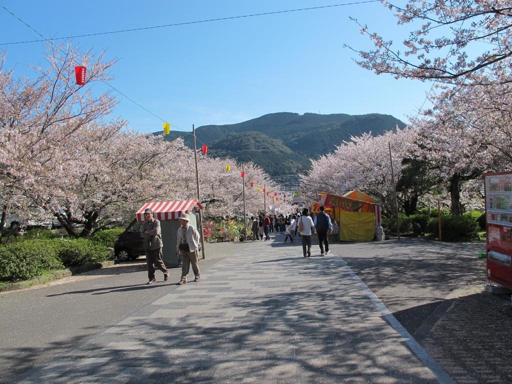 橘神社(橘公園)-4
