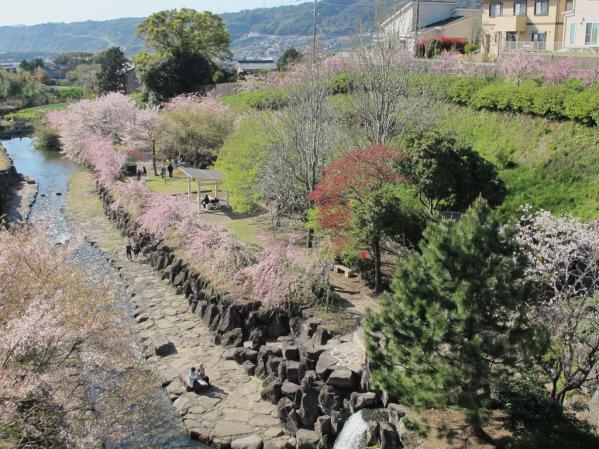 橘神社(橘公園)-3