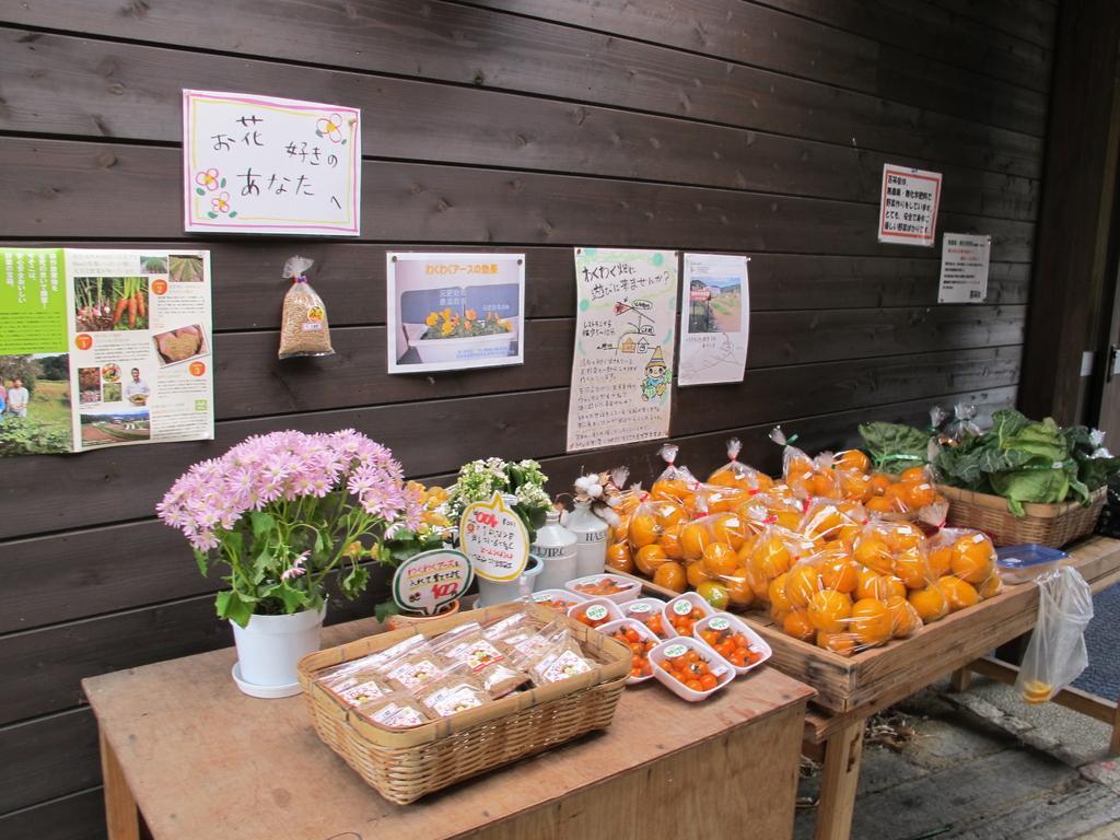 陶農レストラン「清旬の郷」-5