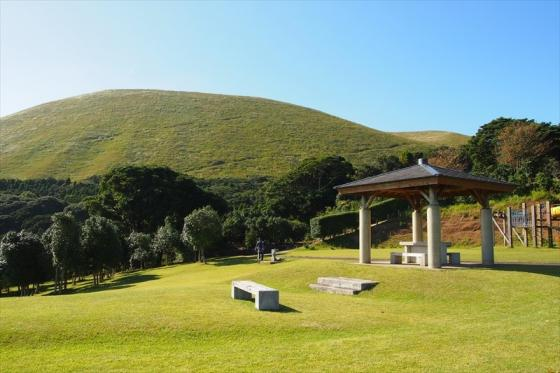 Goto Camellia Forest Park-0