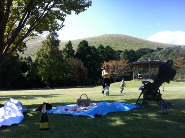 Goto Camellia Forest Park-5