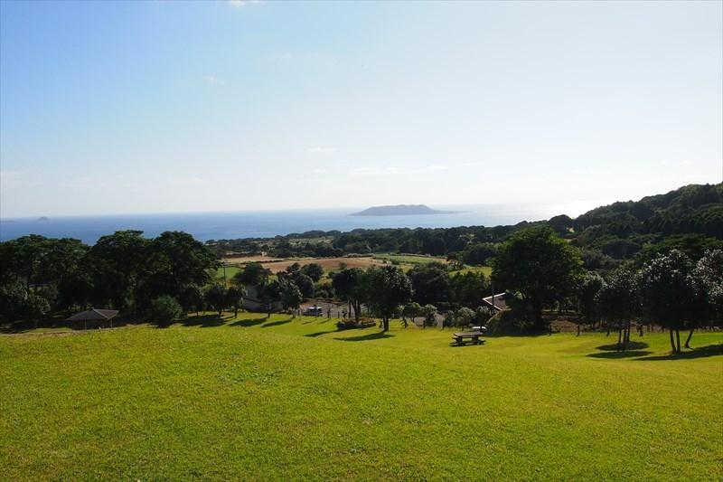 Goto Camellia Forest Park-1