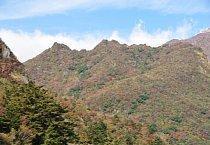 普賢岳紅葉樹林-1