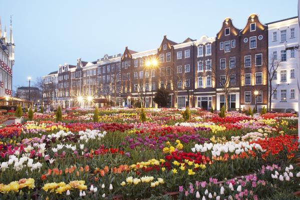 The Huis Ten Bosch Tulip Festival-3