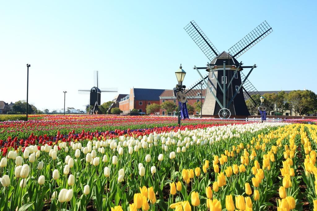 The Huis Ten Bosch Tulip Festival-1