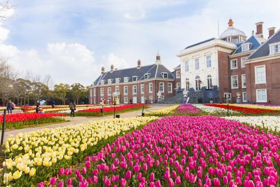 The Huis Ten Bosch Tulip Festival-4