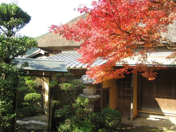 Shindenan - Autumn Public Viewing-0