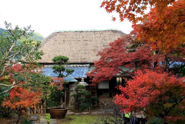 Shindenan - Autumn Public Viewing-2