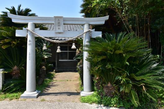 【宇久島】三浦神社の大ソテツ-1