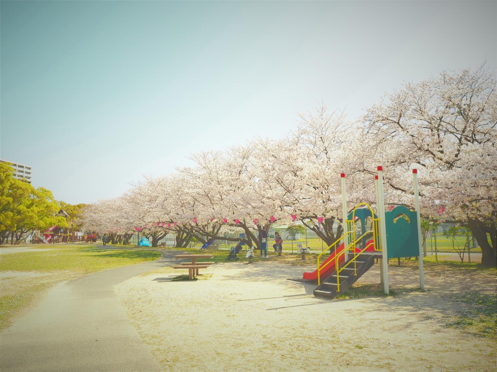 佐世保公園-3