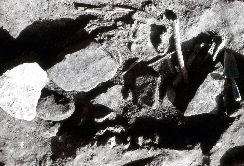 岩下洞穴遺跡-2