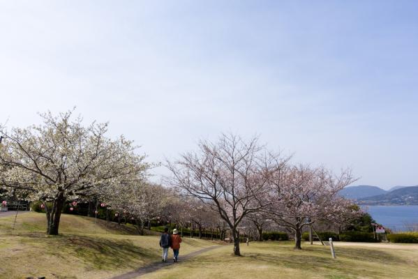 田平公園-3