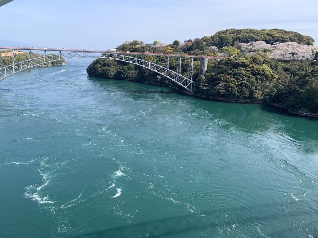 【お花見情報】西海橋のソメイヨシノ-5