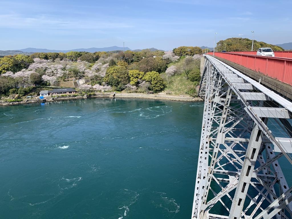 【お花見情報】西海橋のソメイヨシノ-4