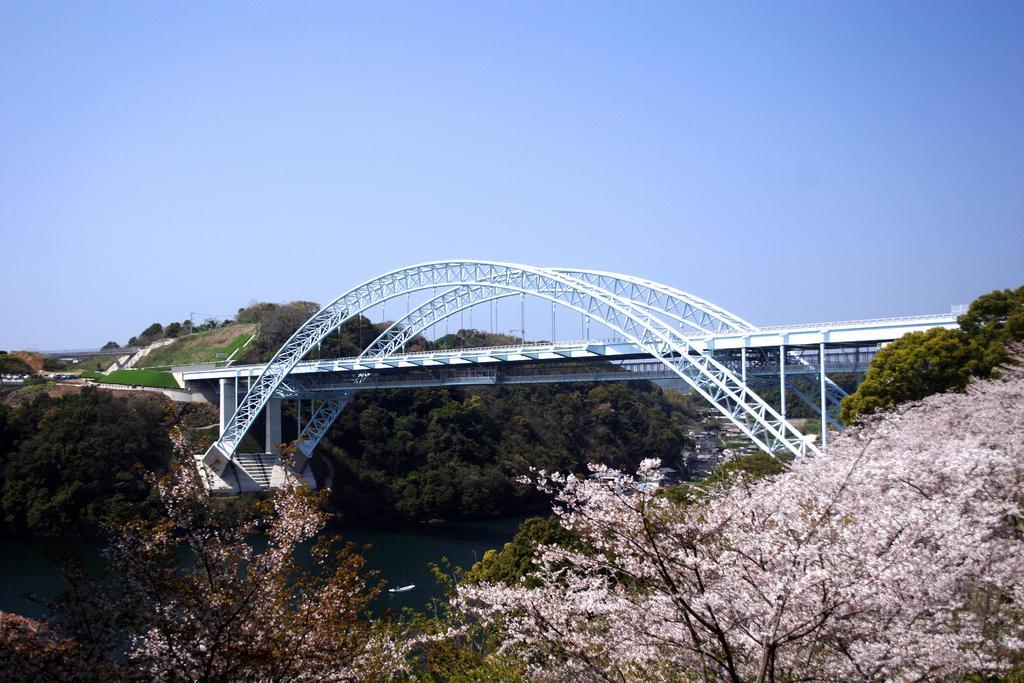 【お花見情報】西海橋のソメイヨシノ-1