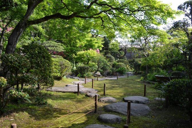 Shindenan Spring Public Viewing-2