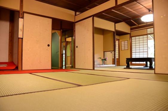 Shindenan Spring Public Viewing-4
