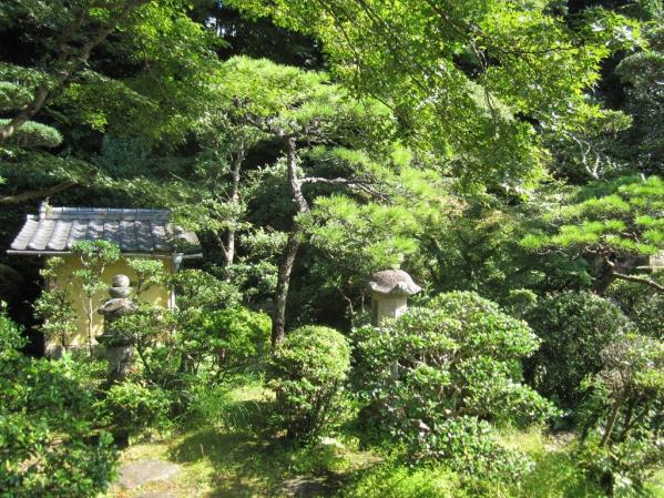 Shindenan Spring Public Viewing-3