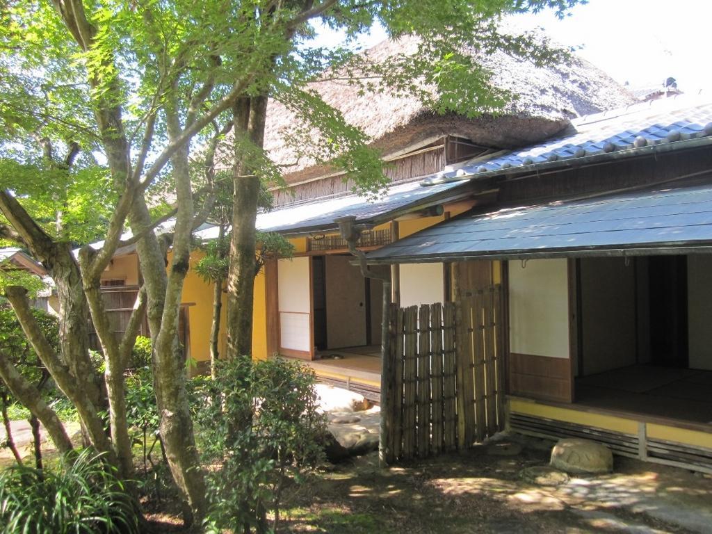 Shindenan Spring Public Viewing-1