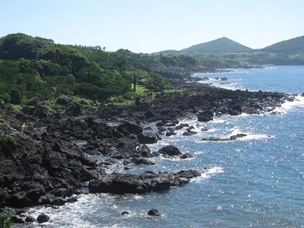 五島めぐり定期観光バス-2