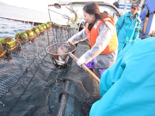 本物漁師体験-1