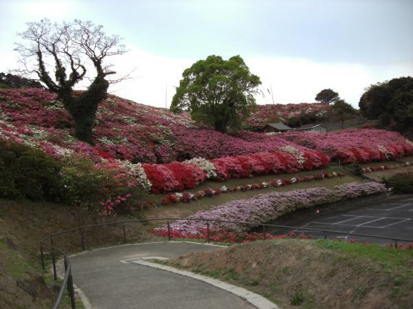 長串山公園-4
