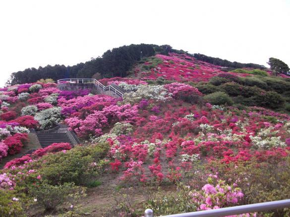 長串山公園-3