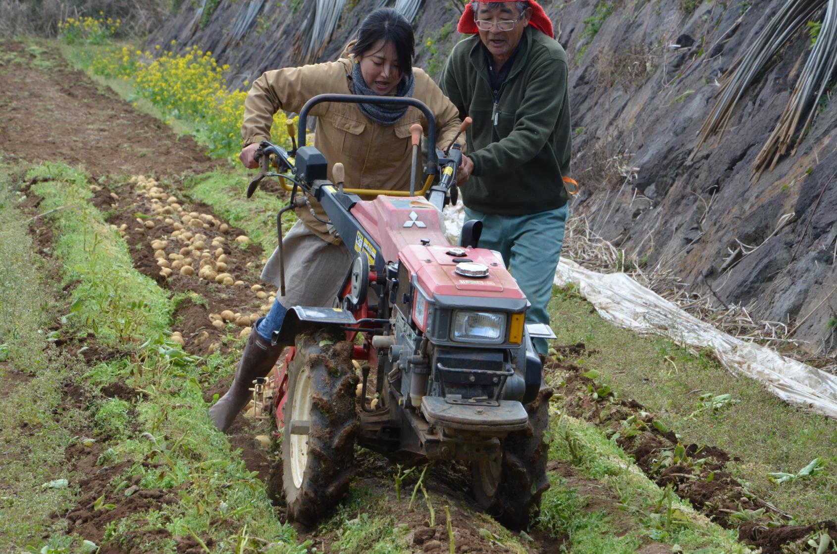 農業体験(旬野菜の収穫体験)-8