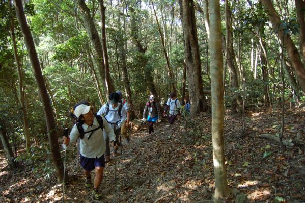 Mt. Shiratake Trekking-4