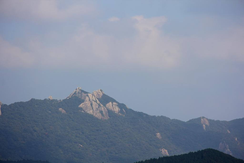 上見坂公園(上見坂堡塁)-8