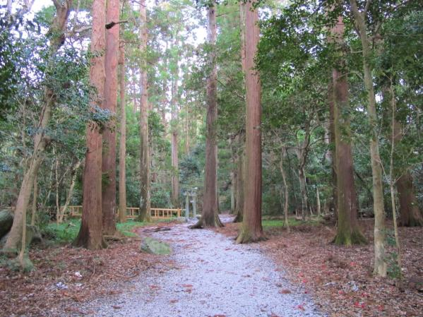 Watatsumi Shrine-5