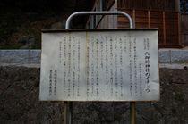 六御前神社の大銀杏(むつのごぜんじんじゃのおおいちょう)-2