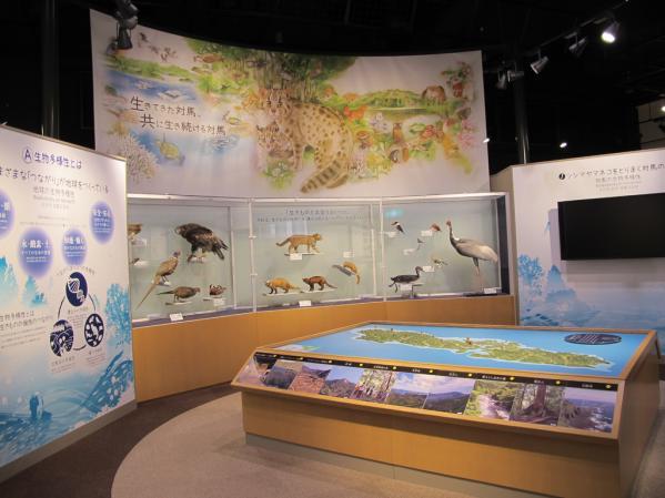 環境省 対馬野生生物保護センター-4
