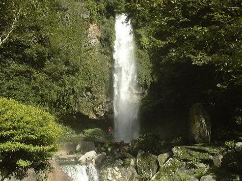 裏見の滝自然花苑-1