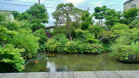 Spring Garden Shimeiso-5