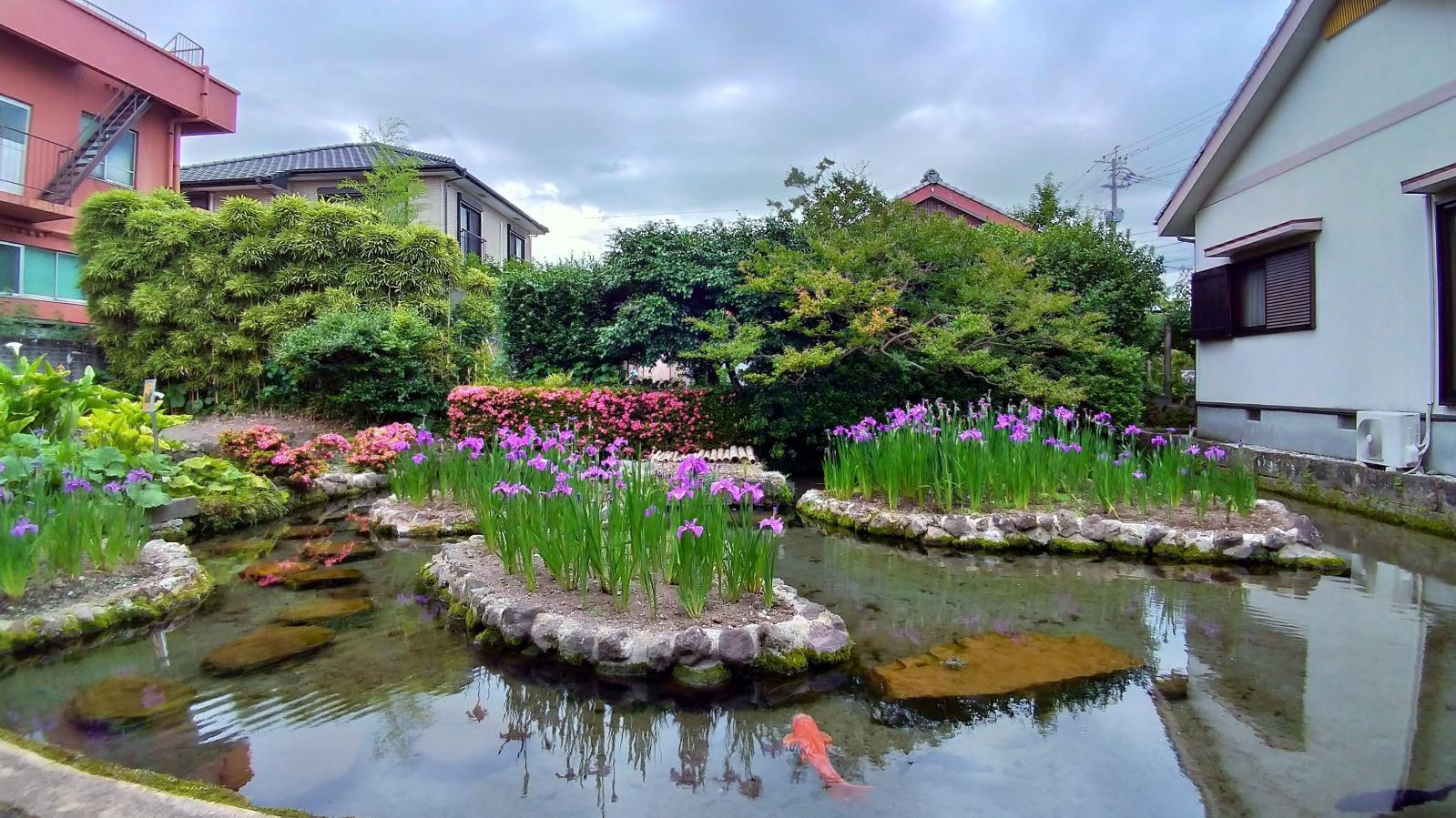 Spring Garden Shimeiso-6