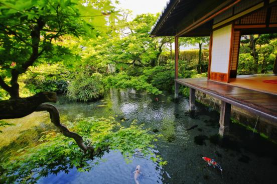 Spring Garden Shimeiso-0